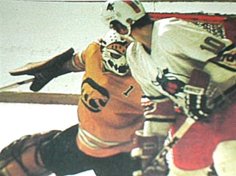 Dave Dryden fends off an attack from the Toronto Toros